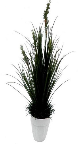27 inch River Grass with 221 lvs Avail in Green Autumn