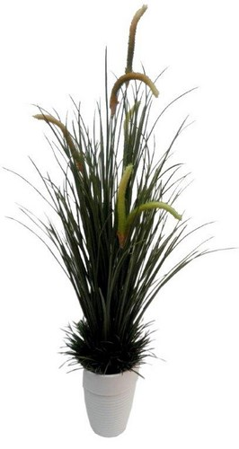 27 inch River Grass with 221 lvs Available in Green Autumn