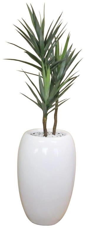 Yucca in Fibreglass Urn 135cm