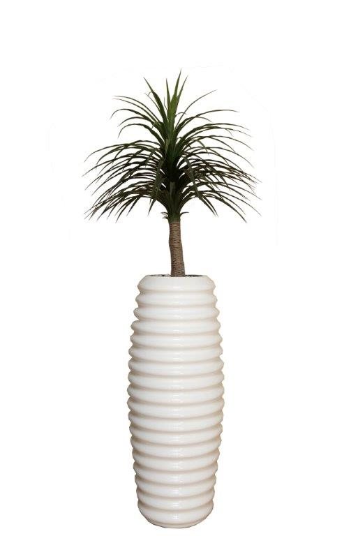 Thin Leave 1.2m Dracaena in Tall Karla